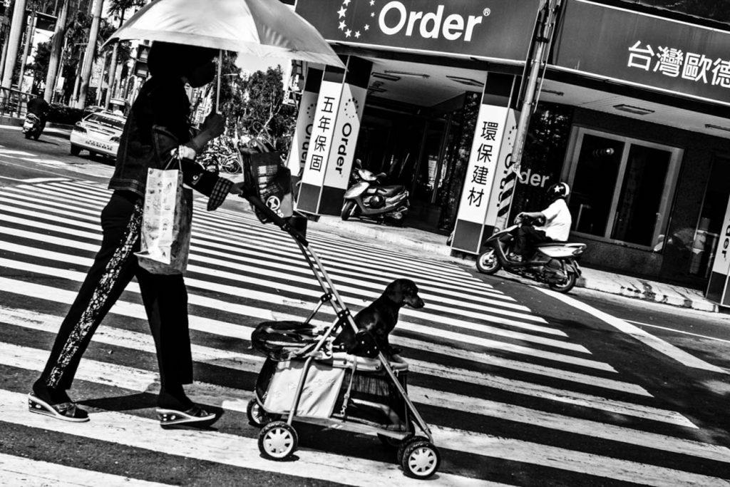 be A Child women with a dog Taiwan photo Yannick RIBEAUT
